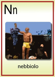 n is for nebbiolo