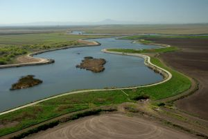 DWR Delta subsidence #2