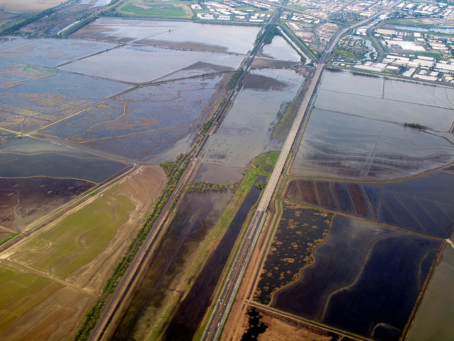 Flooded Yolo Bypass by Patrick Huber