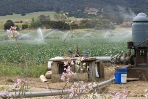 Salinas Valley groundwater sliderbox