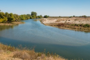 The area surrounding the Chowchilla Bifurcation Structure along the San Joaquin River in Fresno, CA on October 15, 2013.
