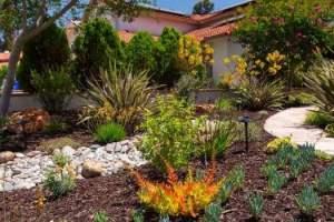 Low water use landscape_San Diego sliderbox