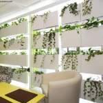 decoracion_con_plantas-1
