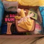 Imagine celebrating the holidays every month! Now you can, with the Baby Trunk {Review}