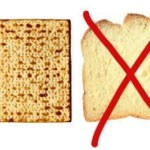 matzah - bread