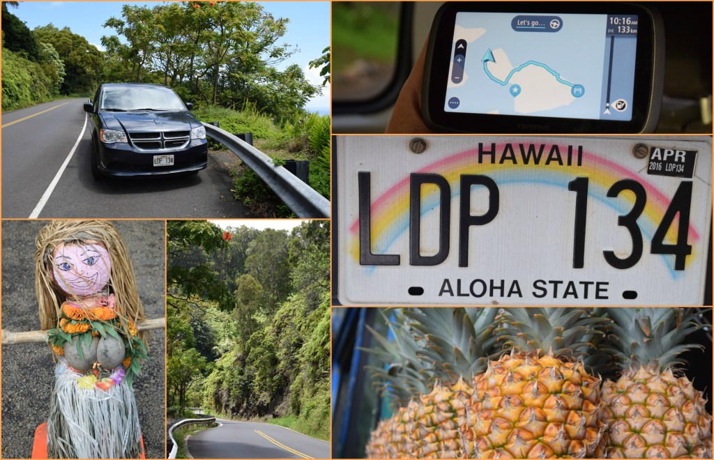 Hawaii Road to Hana