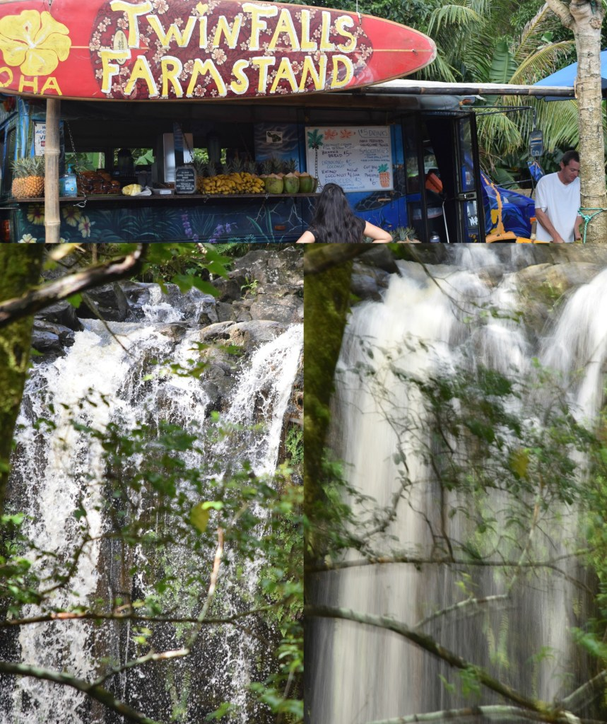 """I took these two contrasting pictures of the falls using Guide mode. Under advanced operation, I selected """"show water flowing"""".  The faster the shutter speed, the less blur."""