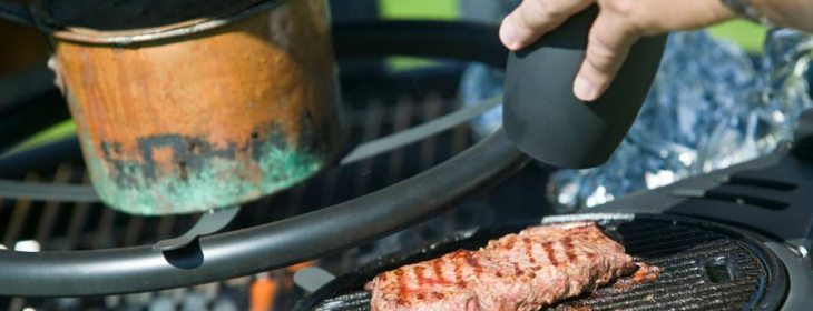 grill, bbq, plancha, charbon de boi, allume-feux