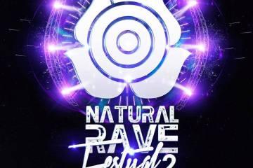Natural Rave Festival 2013