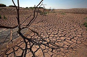 drought_texas_1017