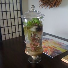 Fish on Pinterest | Fish Tanks, Betta Fish Tank and Betta