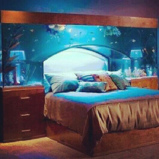 Cool fish tanks for bedrooms bedroom cool houses for Awesome fish tanks