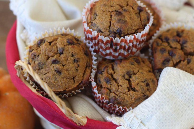 Paleo Barb's Pumpkin Chocolate Chip Muffins