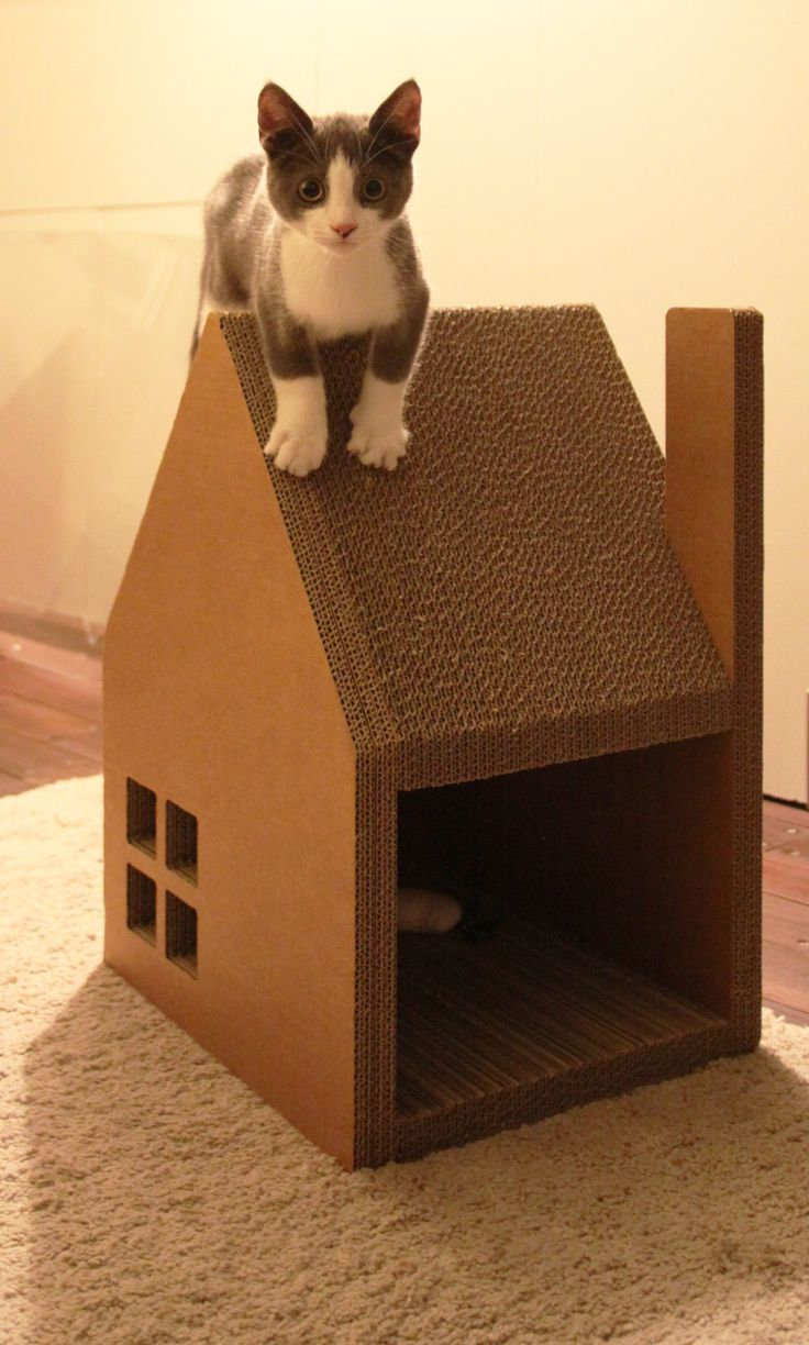 Best Cardboard Cardboard Cat House Ebay Cardboard Cat House Diy Spectacular Cat Houses Made Entirely Out curbed Cardboard Cat House