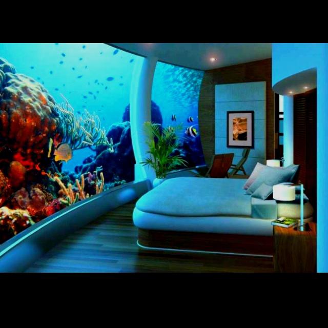 Fish tank wall!! | Aquariums & Tanks | Pinterest