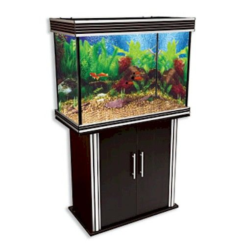 Nautilis I 49 Gallon Rectangular Black Aquarium Combo! Comes with