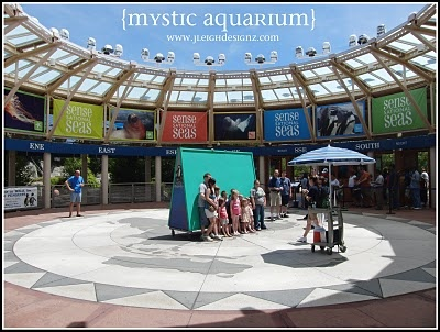 The Mystic Aquarium in Mystic Connecticut was great. There was a lot