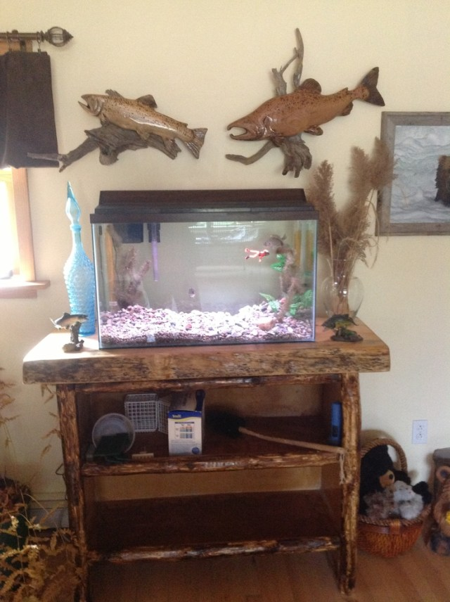 Fish tank stand | love it | Pinterest