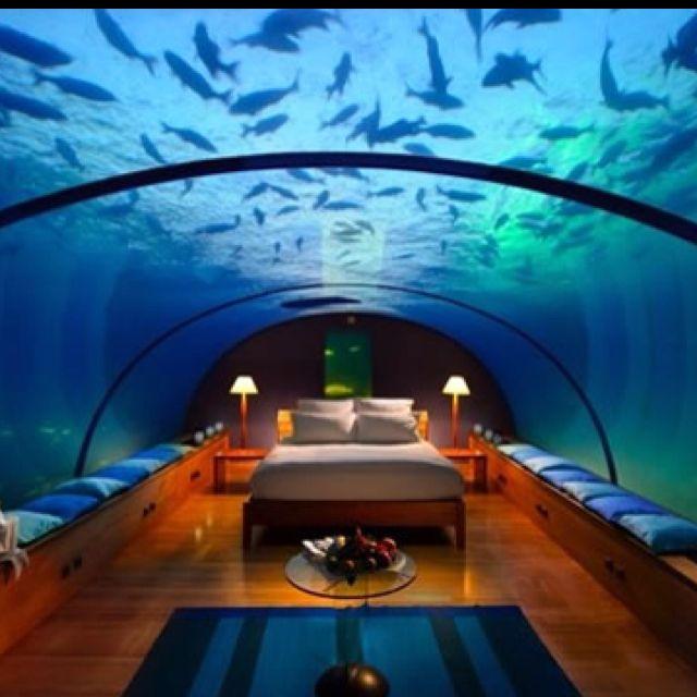 Aquarium Hotel Room | Aquarium | Pinterest