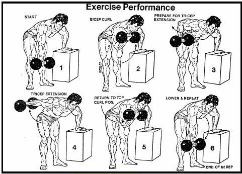 Best Tricep And Biceps Workouts With Dumbbells Sport1stfuture Org