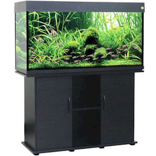 Delta Queen 75 Gallon Fish Tank Black Aquarium and Stand Combo! Comes