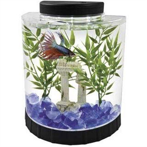 Gallon Small Fish Tank Aquaraman Food Office Bedroom Kids Gift Xm