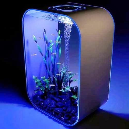 Pin by Guy Richard Maki on Awesome Aquariums !!! | Pinterest