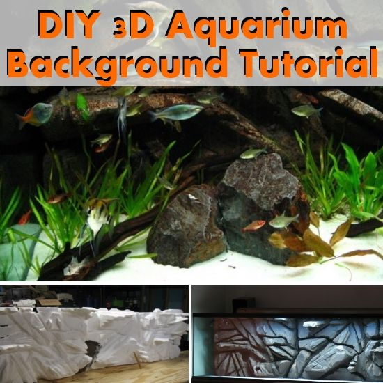 DIY 3D Aquarium Background Tutorial | DIY Ideas | Pinterest