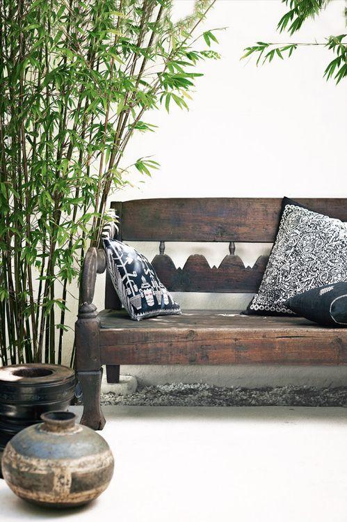 Decorare il giardino con le piante di bamb guida giardino - Bambu in vaso acqua ...