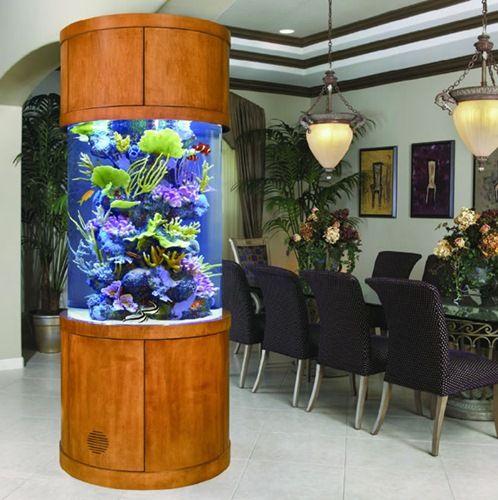 Cool fish tank!! | Aquariums/ Fish Tanks | Pinterest