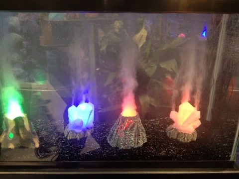 Active volcano in your fish tank. | Gianna | Pinterest