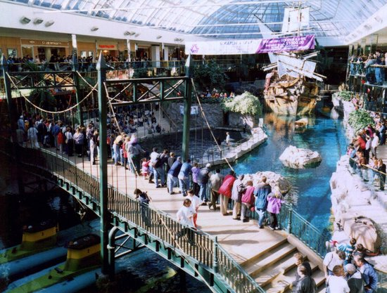 View of fish aquarium at Edmonton mall.   Picture of West Edmonton