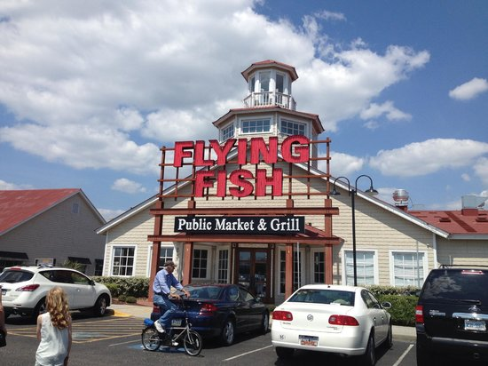 Flying Fish   A MUST SEE & TASTE   Foto di Barefoot Landing, North