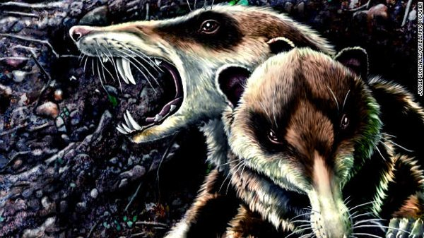 Cnn Dam Assets 111102032029-Extinct-Mammal-Story-Top