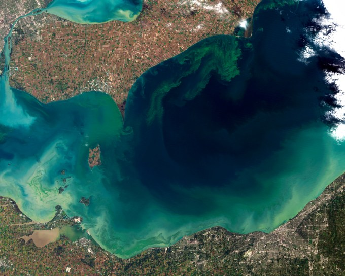 A massive algae bloom in Lake Erie in October, 2011 is seen in this Landsat-5 satellite image. The green scum is mostly Microcystis, which produces a liver toxin and can cause skin irritation. (Image: NASA)