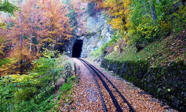 Slow TV: spend an hour on this Swiss mountain rail line