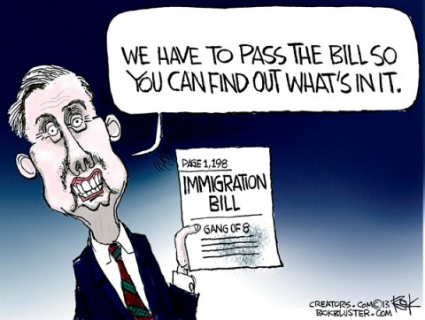 133890 600 Immigration Bill cartoons