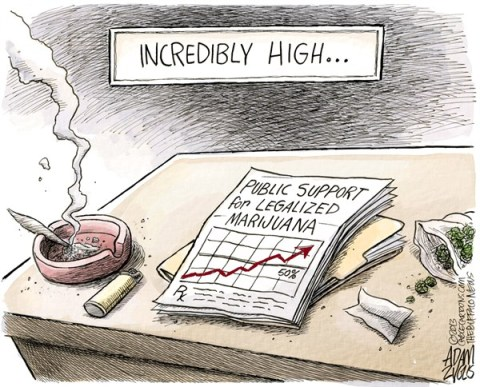 Adam Zyglis - The Buffalo News - Legalized Marijuana COLOR - English - marijuana, legalized, legal, medical, polls, public opinion, approval, society, new york, law, drugs, war on drugs, recreational, prescription, high