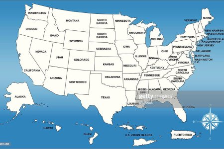 usa map with its territories and comp vector art