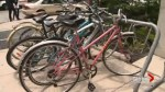 Online petition calls for harsher punishments for bike thrives in Toronto