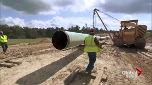 Federal government faces fallout over pipeline approvals