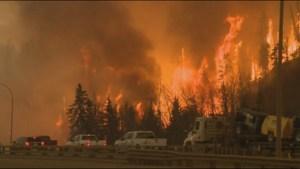 Provincial state of emergency declared in Alberta