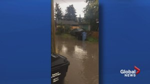Calgary homeowner frustrated with alley drainage problem, repeat basement flooding