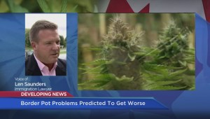 Border pot problems predicted to get worse