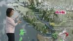 BC Evening Weather Forecast: Dec 4