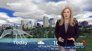 Edmonton early morning weather forecast: Tuesday, May 16, 2017
