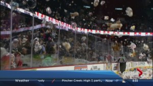 Teddy bear toss hits the ice at Hitmen game