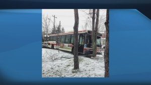 Five injured in Highland Creek TTC bus crash