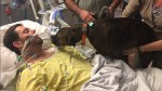 Dog says final goodbye to dying owner on hospital bed