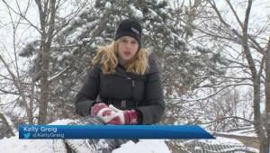 Heavy snowfall hits Montreal